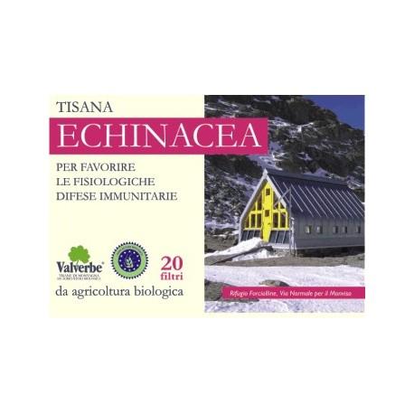 Tisana Echinacea - VALVERBE