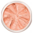 Beach Babe - Mineral Blush - LILY LOLO