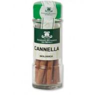 Cannella in Canna - GIARDINO BOTANICO DEI BERICI