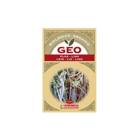 Semi per Germogli - Lino - GEO