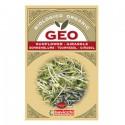 Semi per Germogli - Girasole - GEO