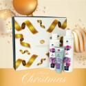 Kit Natale Hibisco e Vite - ALKEMILLA
