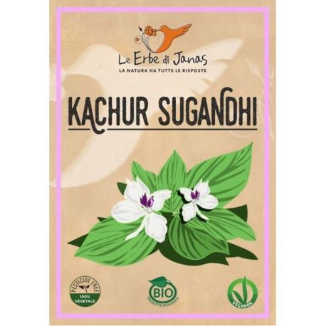 Kachur Sugandhi- LE ERBE DI JANAS