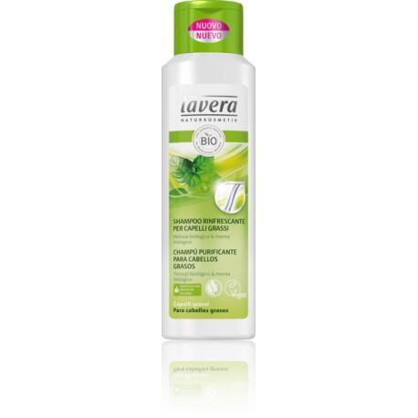 Shampoo Rinfrescante per Capelli Grassi - LAVERA