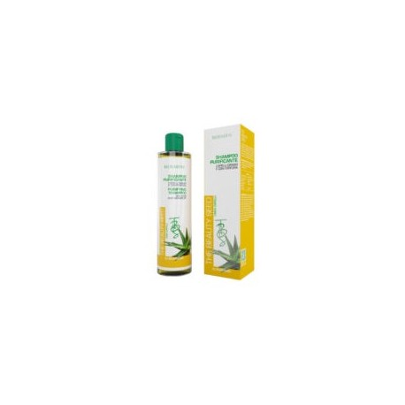 The Beauty Seend Shampoo Purificante - BIOEARTH