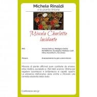 Miscela Charlotte ( lucidante ) - MICHELE RINALDI E LE ERBE TINTORIE